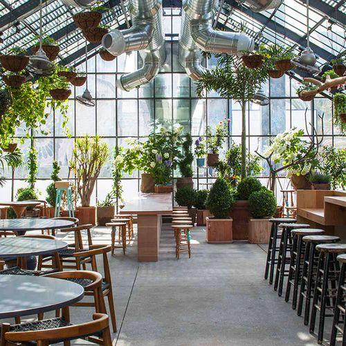 LA's Koreatown Greenhouse: The Line Hotel's Commissary