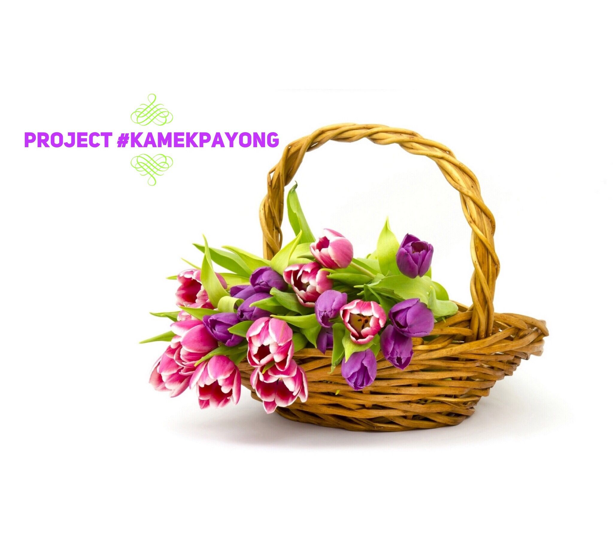 Investment can be like pretty flowers but takaful is the basket investment can be like pretty flowers but takaful is the basket that carries the flowers juez0ne kamekpayong izmirmasajfo