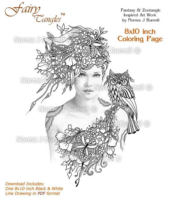Woodland Meadow Fairy And Owl Tangles Adult Printable Coloring Pages By Norma J Burnell Sheets Gray Scale Images To Color