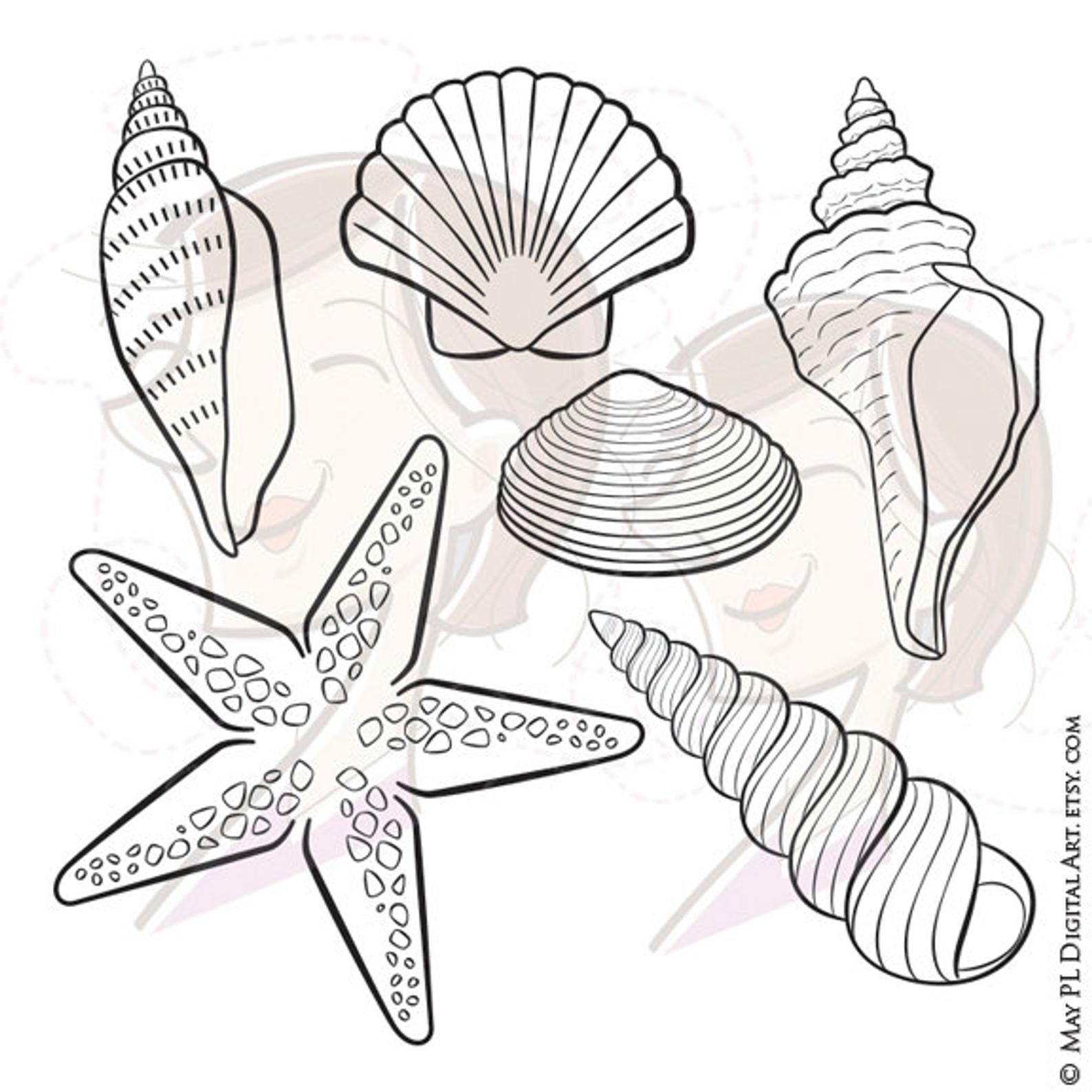 Digital Seashell Stamps Summer Beach Vector Clipart