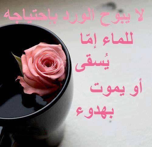 الاهتمام لا يطلب Arabic Quotes Inspirational Quotes True Quotes