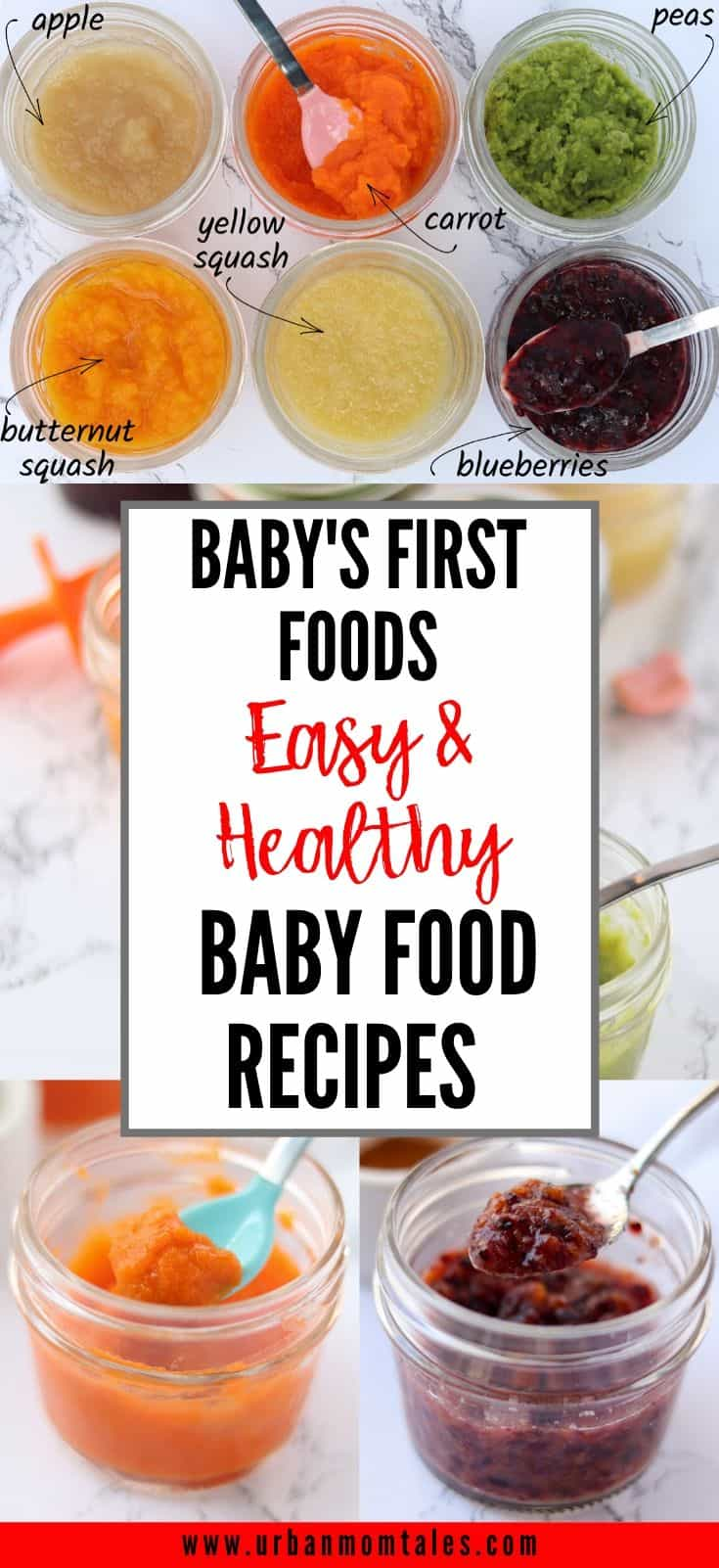 Baby Food Recipes for Your 6 Month Old