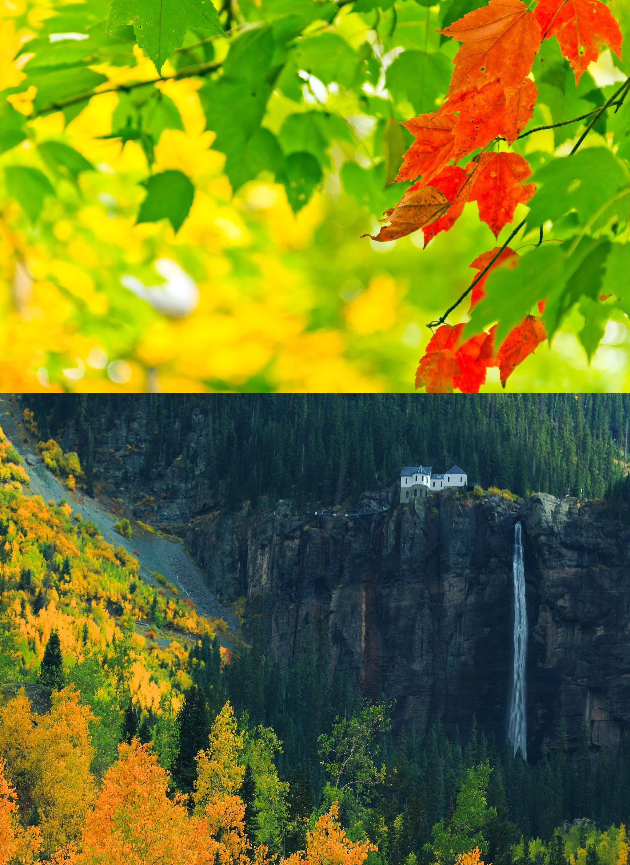 Nature, autumn, leaves, paint, lights, bokeh, nature, autumn, leaves ...