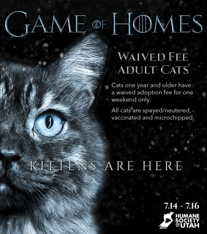 The Humane Society Of Utah Ties In A New Season Of Game Of Thrones With The Game Of Homes Check Animal Shelter Fundraiser Humane Society Pet Adoption Event
