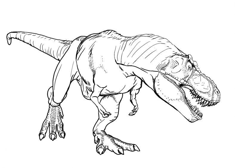Dinosaur Coloring Pages T Rex Dinosaur Coloring Pages Dinosaur Coloring Animal Coloring Pages