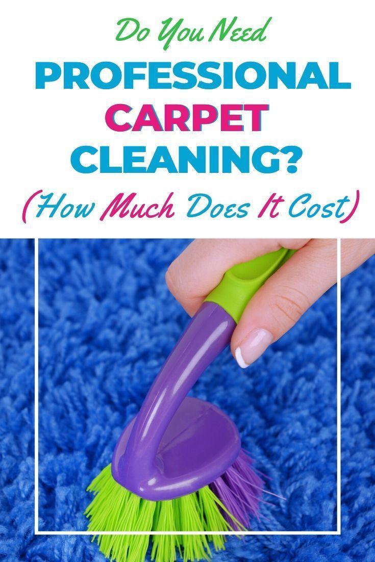 Do you need professional carpet cleaning? And how much does carpet cleaning cost? We answer those pressing questions for all types of carpet cleaning here. #carpetcleaning #carpetcleaningtips #carpet #carpetcleaninghacks #cleaningtips #cleaninghacks #howtoclean