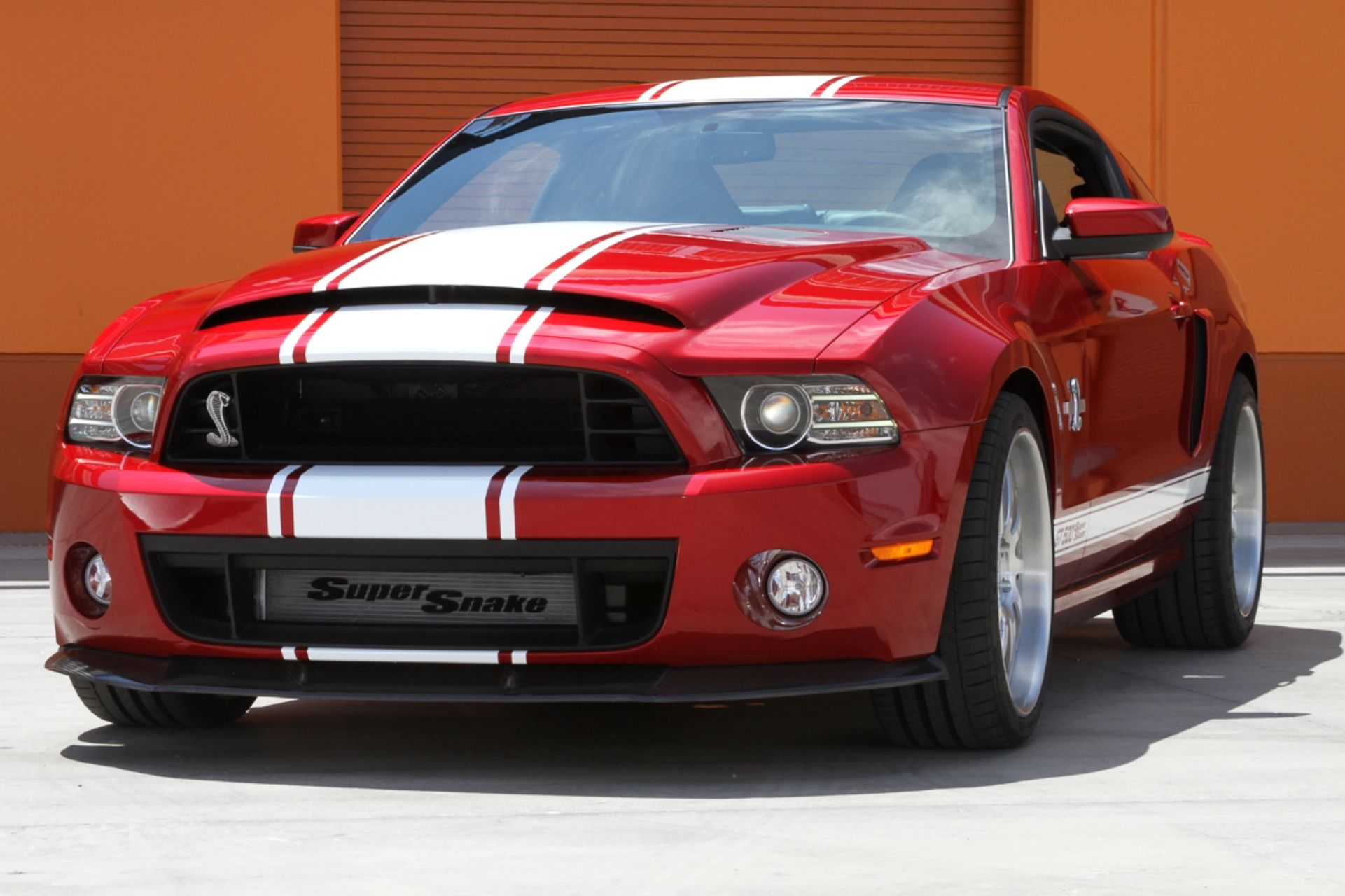 Ford mustang shelby cobra gt500 super snake looking at these mustangs i want so badly