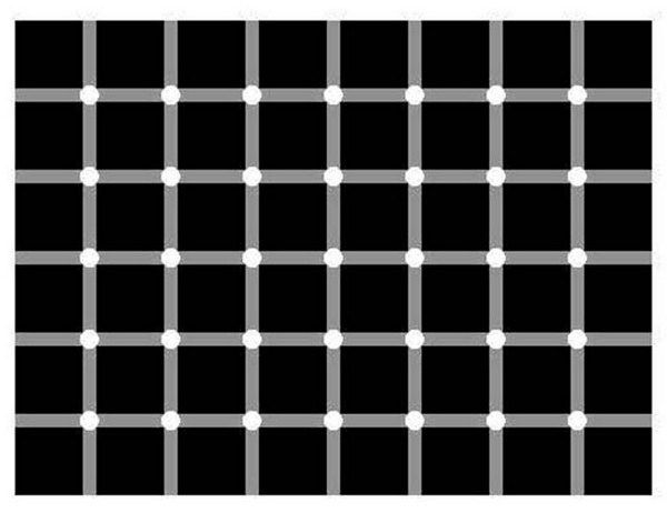 optical-illusion-count-the-number-of-black-dots