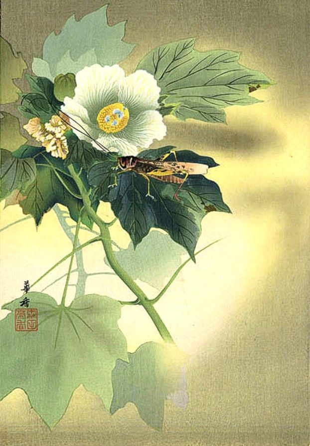Tsuji Kakō Wikipedia Peinture Japonaise Art Asiatique Art Coreen