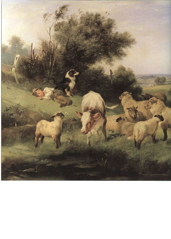 Border Collie Guards Sheep And Cow Boy Shepherd by NoCrybabyDoGs, $17.20