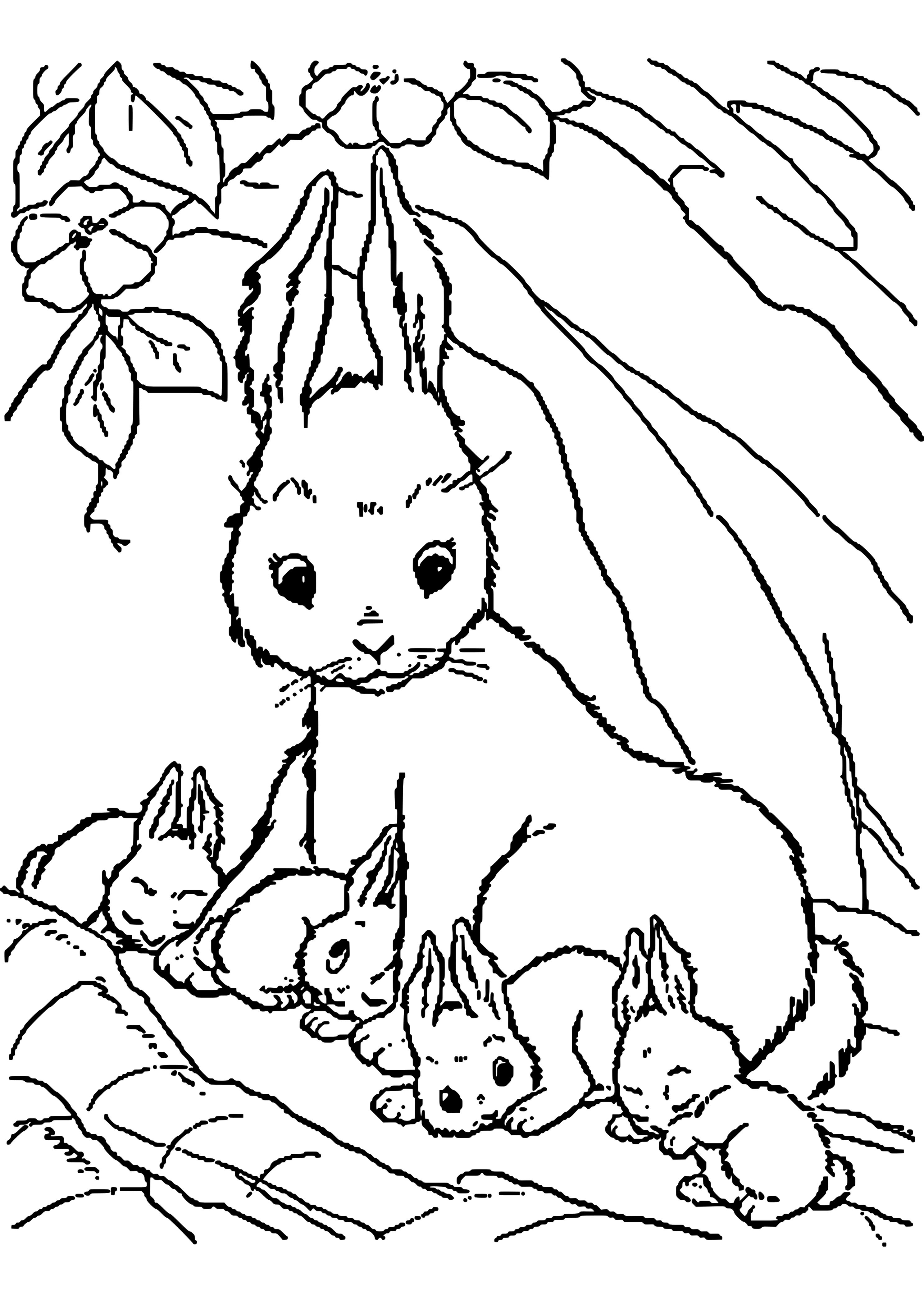 Ausmalbilder Kaninchen 6  Ausmalbilder tiere, Ausmalbilder