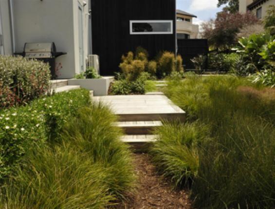 Native (With images)   Sloped garden, Garden design, Garden