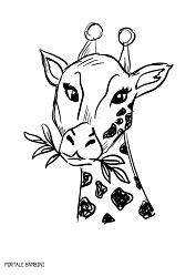 Disegni Di Giraffe Da Stampare E Colorare Gratis Portale Bambini