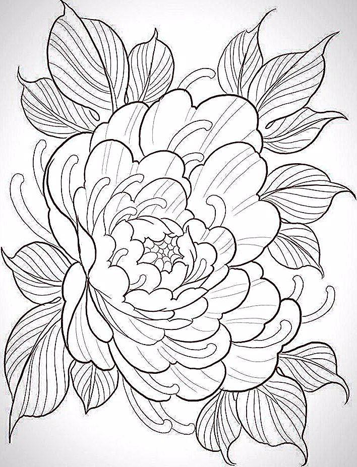 Japanese Tattoo Designs Sleeve Japanesetattoos Japansetattoo Japanese Tattoo Designs Sleeve J Japanese Tattoo Designs Japanese Tattoo Japanese Flower Tattoo