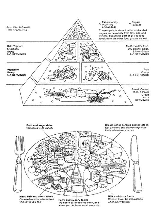 Food Guide Pyramid A Guide To Daily Food Cholcos Coloring Page For