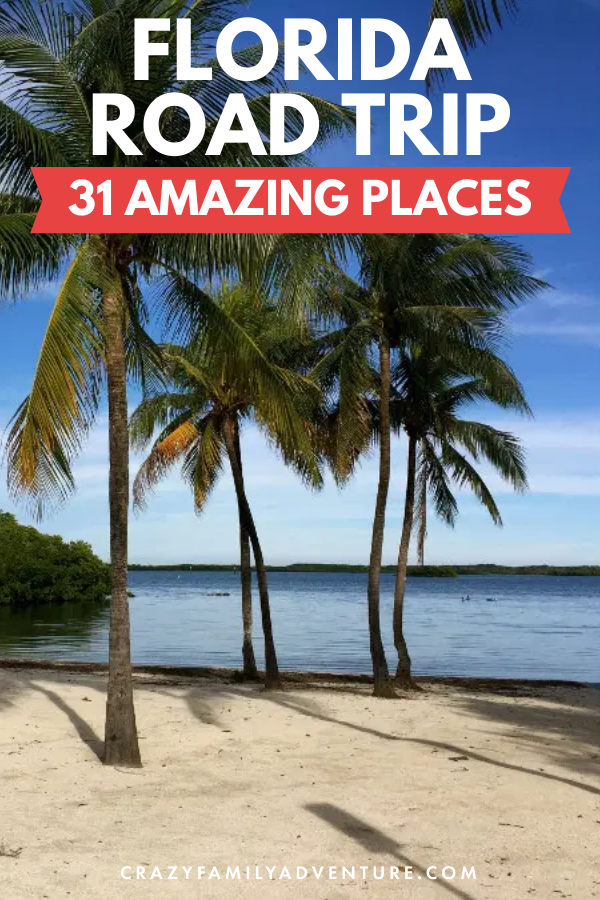 Florida Road Trip 31 Amazing Places You Won T Want To Miss Family Adventure Travel Family Travel Destinations Trip