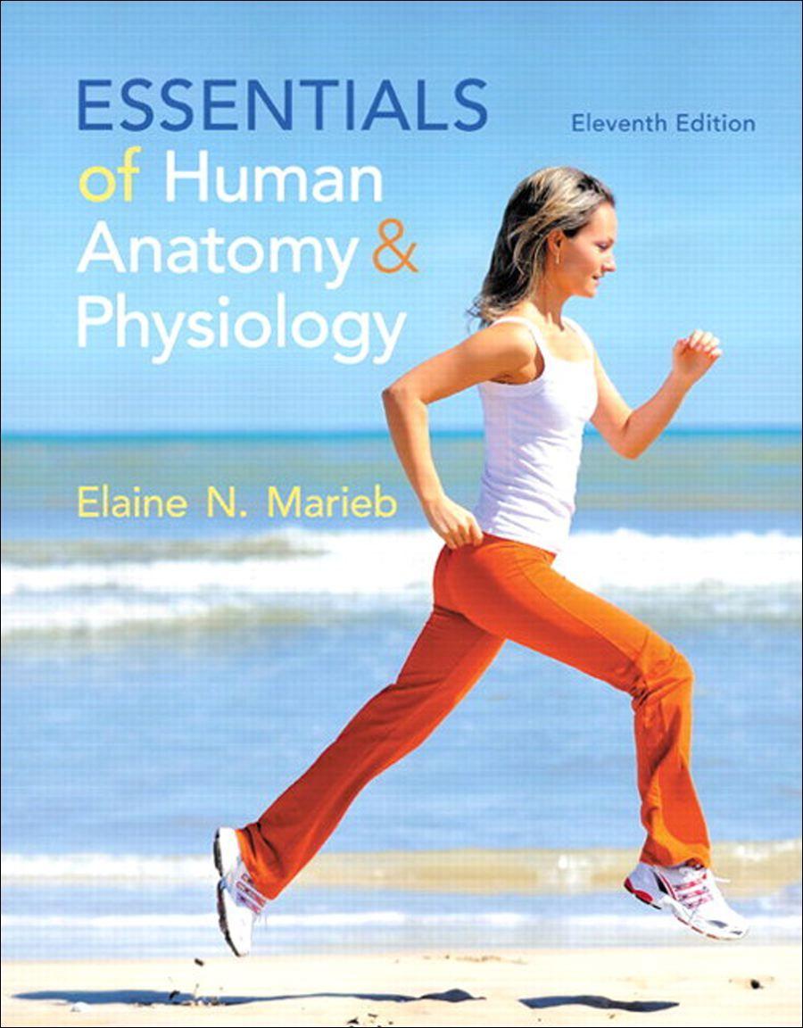 DeVry University | Essentials of Human Anatomy & Physiology ...