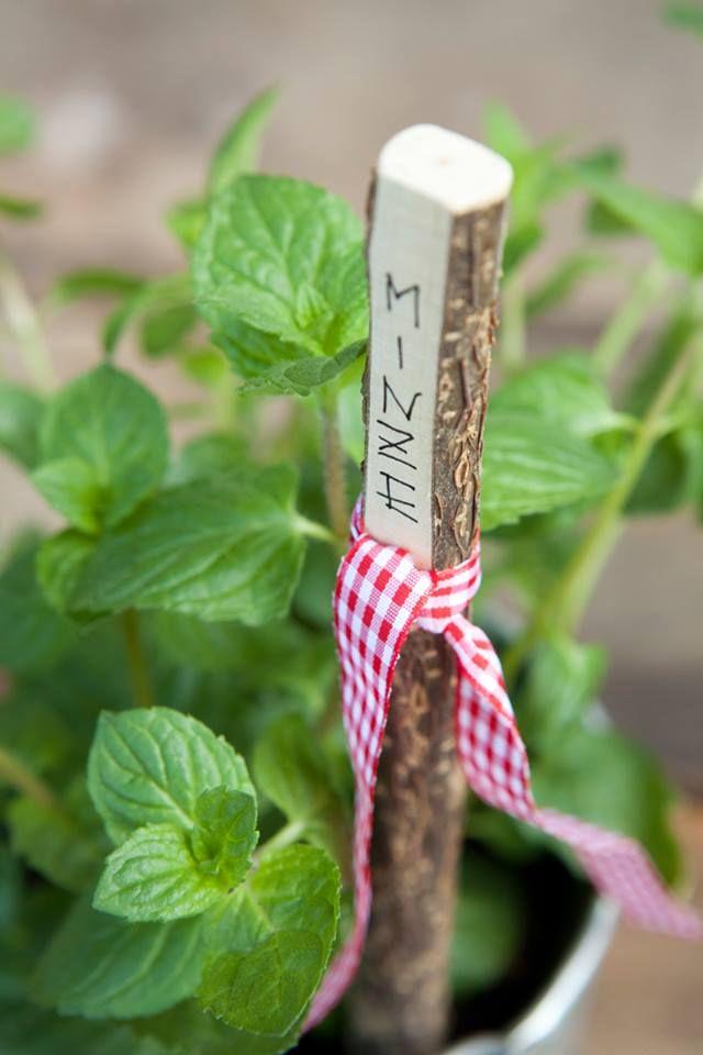 naturholz im garten, pflanzenschilder aus naturholz | garten | pinterest | plant markers, Design ideen