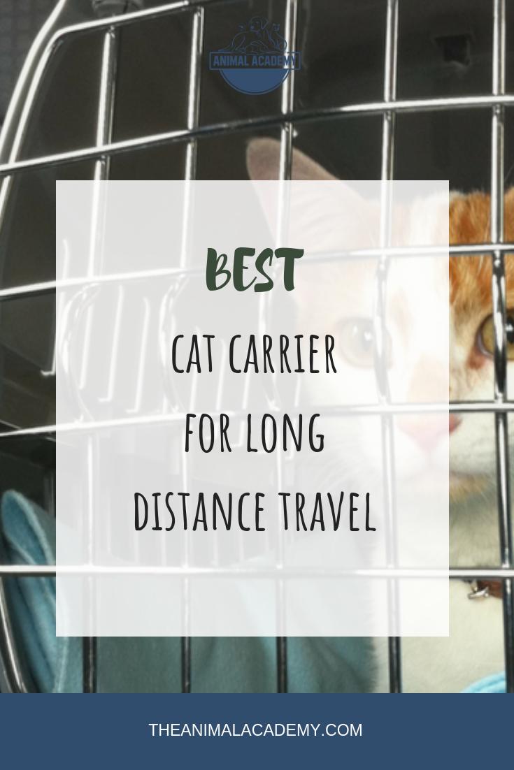 Best Cat Carrier for LongDistance Travel Cat carrier