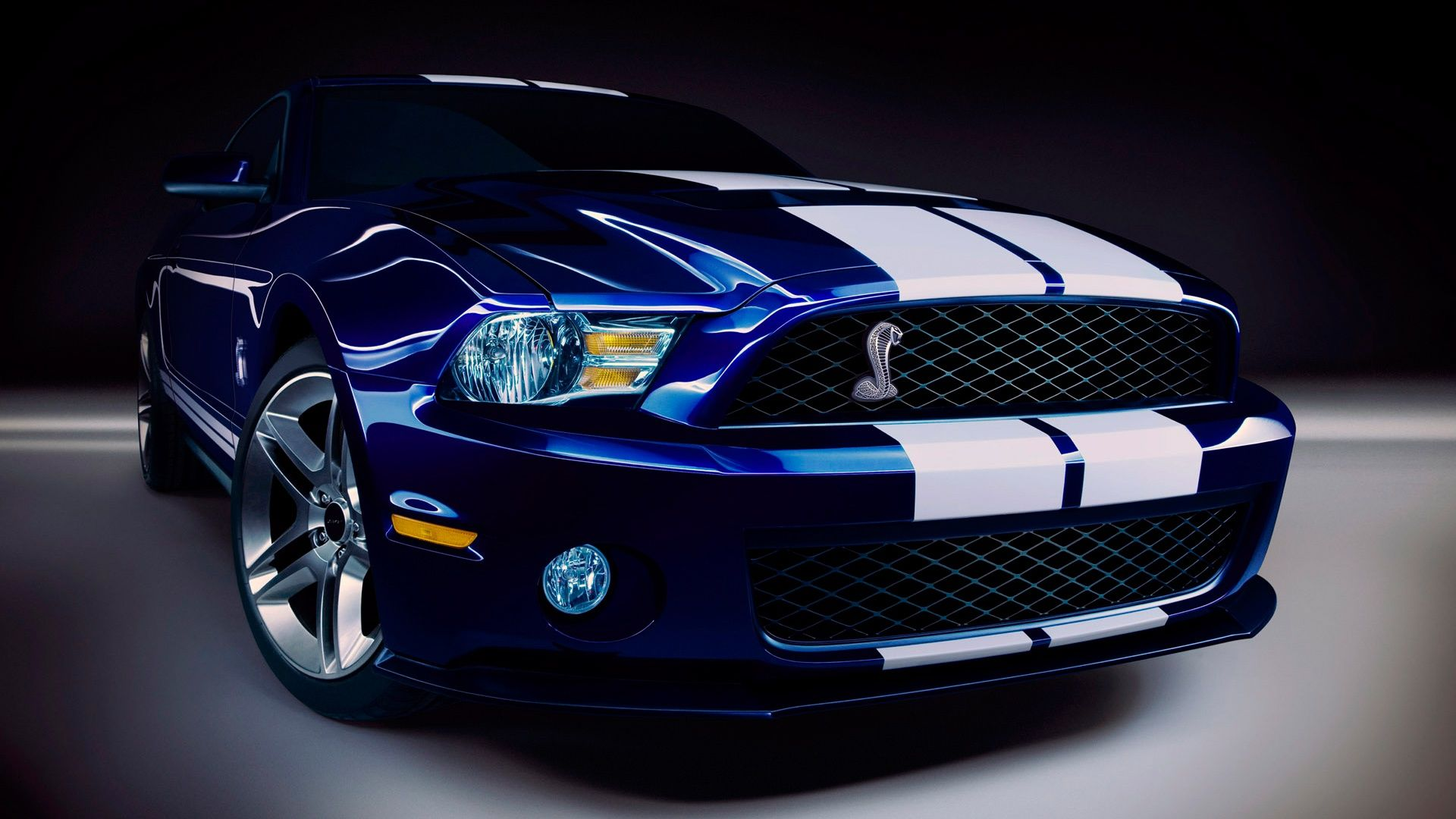 Ford Shelby GT500 – 1080p HD Wallpaper Car | Stuff to Buy ...