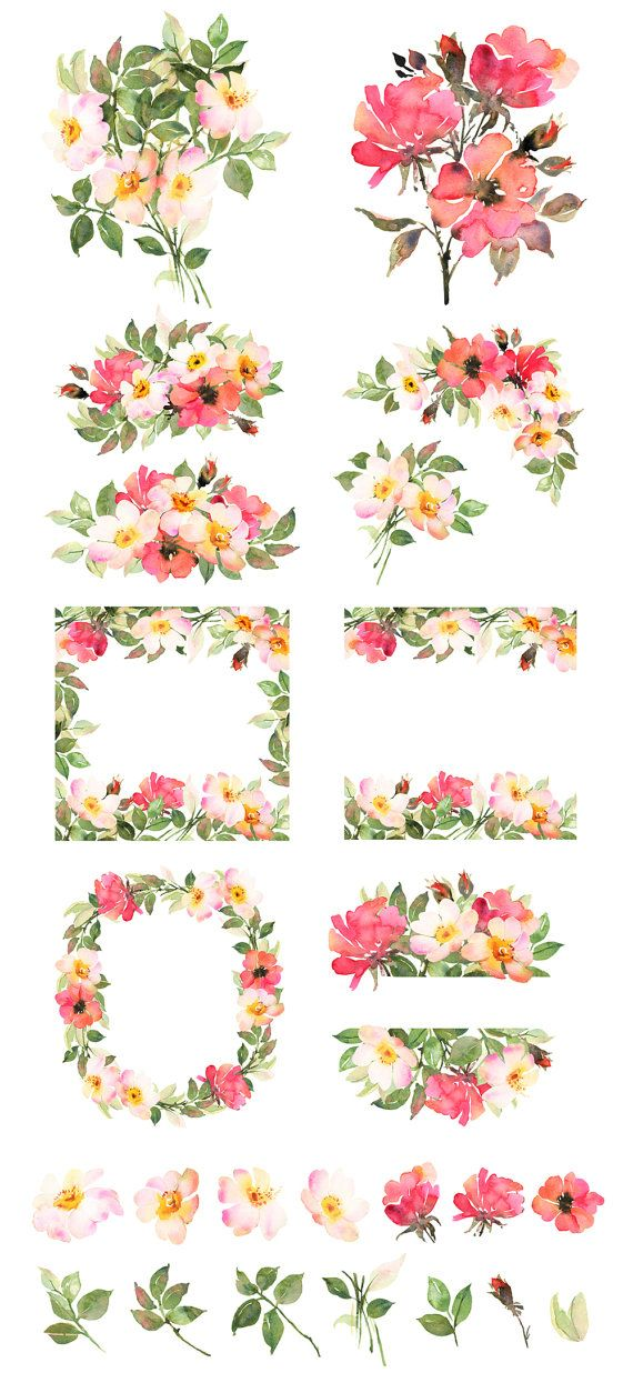 Flower Clipart Bohemian Roses Hand Painted Clipart Boho Clipart