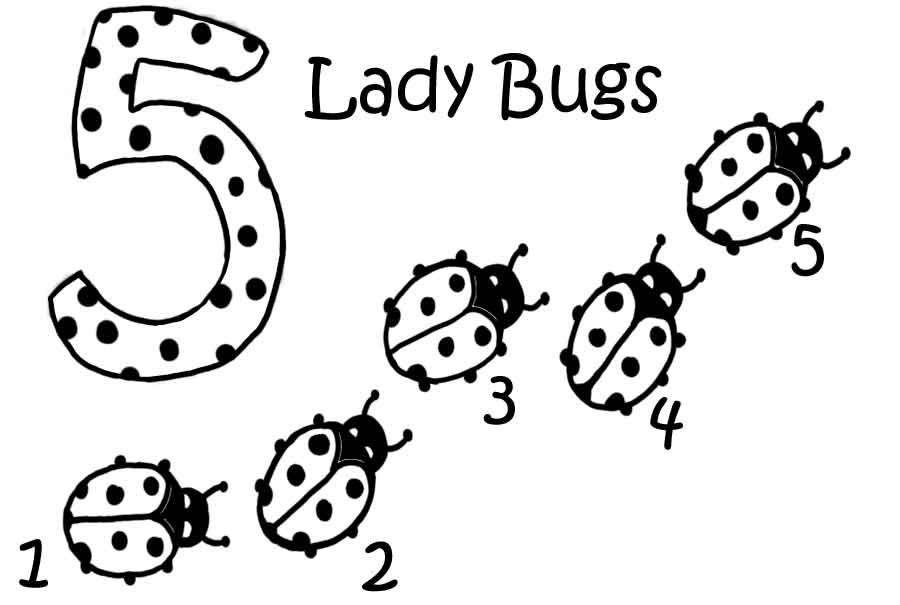 Pin on ladybug party