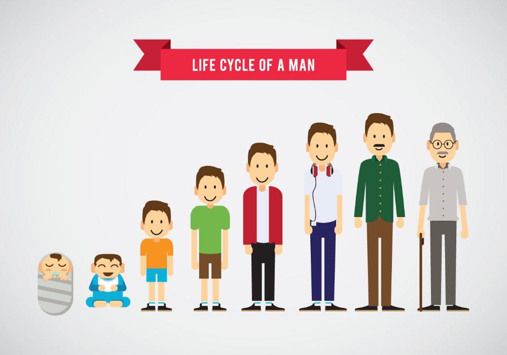 Lifecycle Of A Man Vector Man Vector Family Cartoon Family Illustration