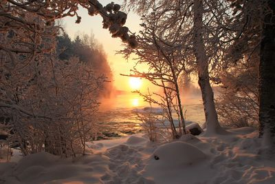 A view of winter day in Finland