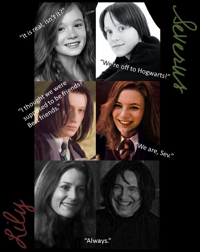 Through the years | All Things Harry Potter | Harry potter