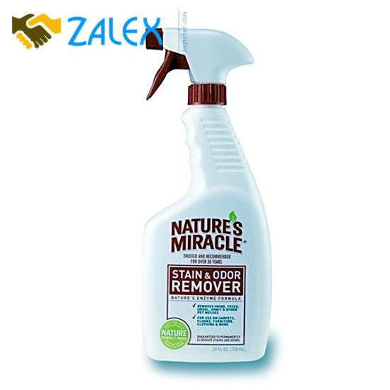 what removes cat spray odor