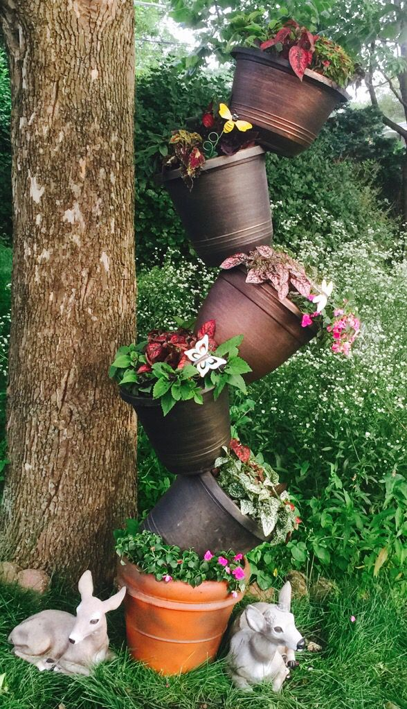 Topsy Turvy Planter Made With Terra Cotta Pot Coleus And