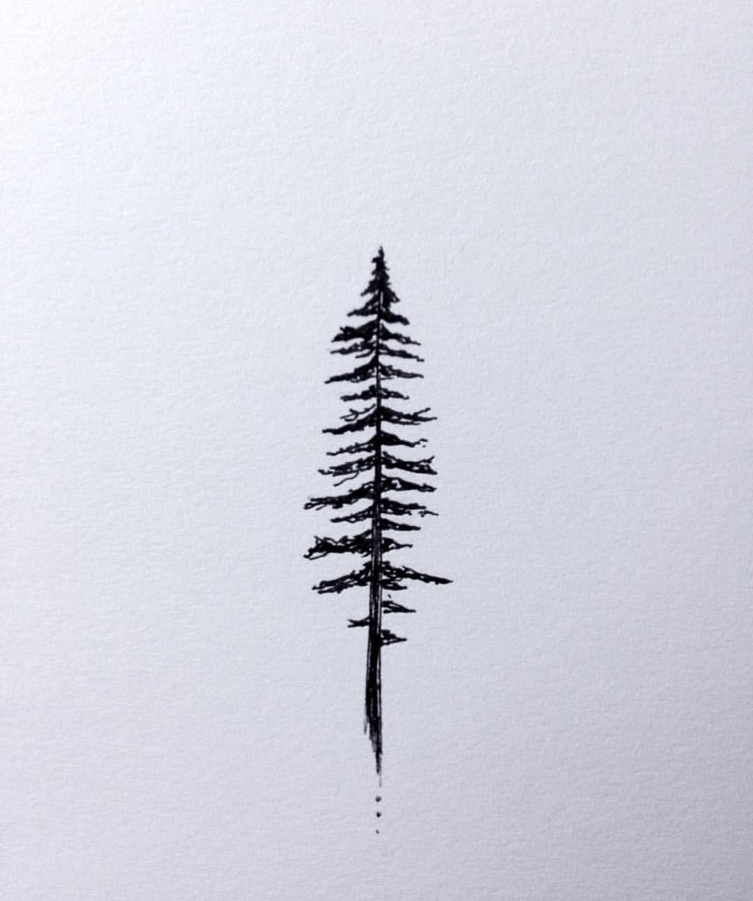 "Pnwonderland on Instagram: ""Creative inspiration 🖋 Artwork by @chasingamoment #pnwonderland"""