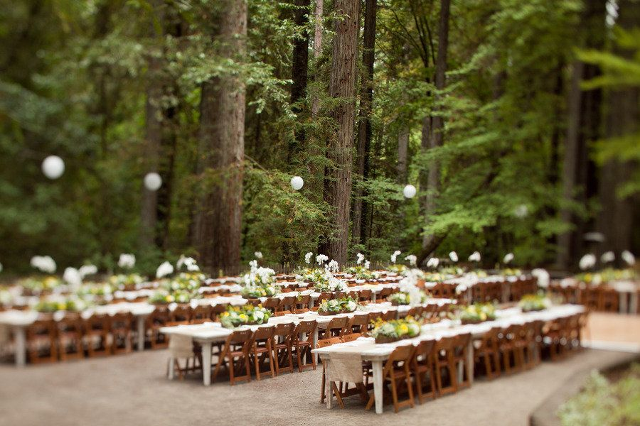 Santa Rosa Wedding In Griffith Woods From Noonan S Wine Country Designs Wedding In The Woods Wine Country Wedding Country Design