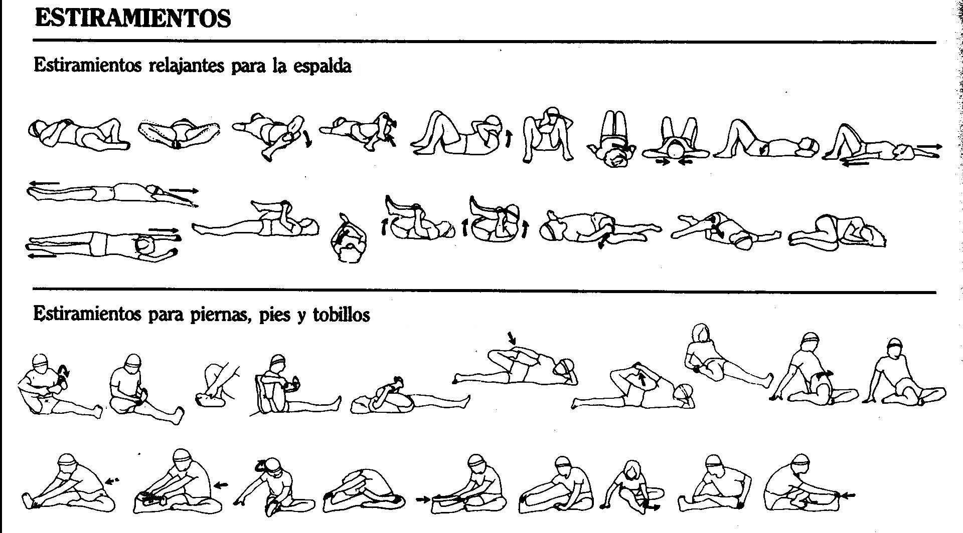 piernas y espalda   Estiramientos   Pinterest   Espalda, Piernas y ...