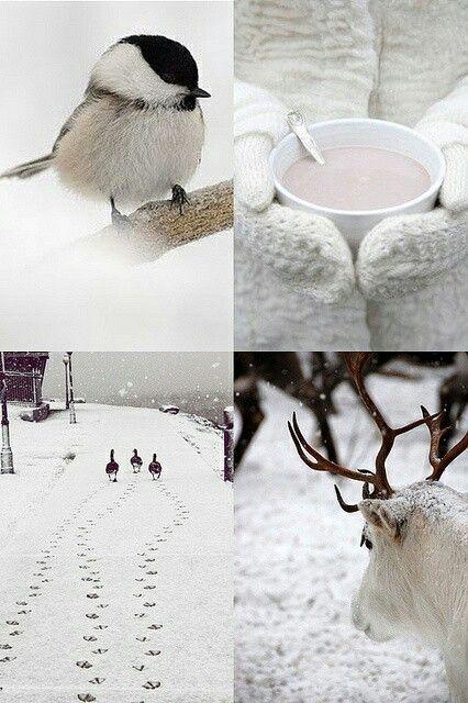 Winter sfeerbeeld - #leenbakker #101woonideeen #warmwinterfeeling