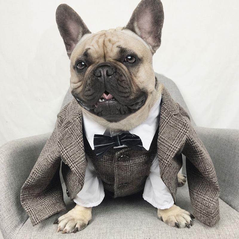 Dog Tuxedo & Vest Set French bulldog clothes, Dog tuxedo