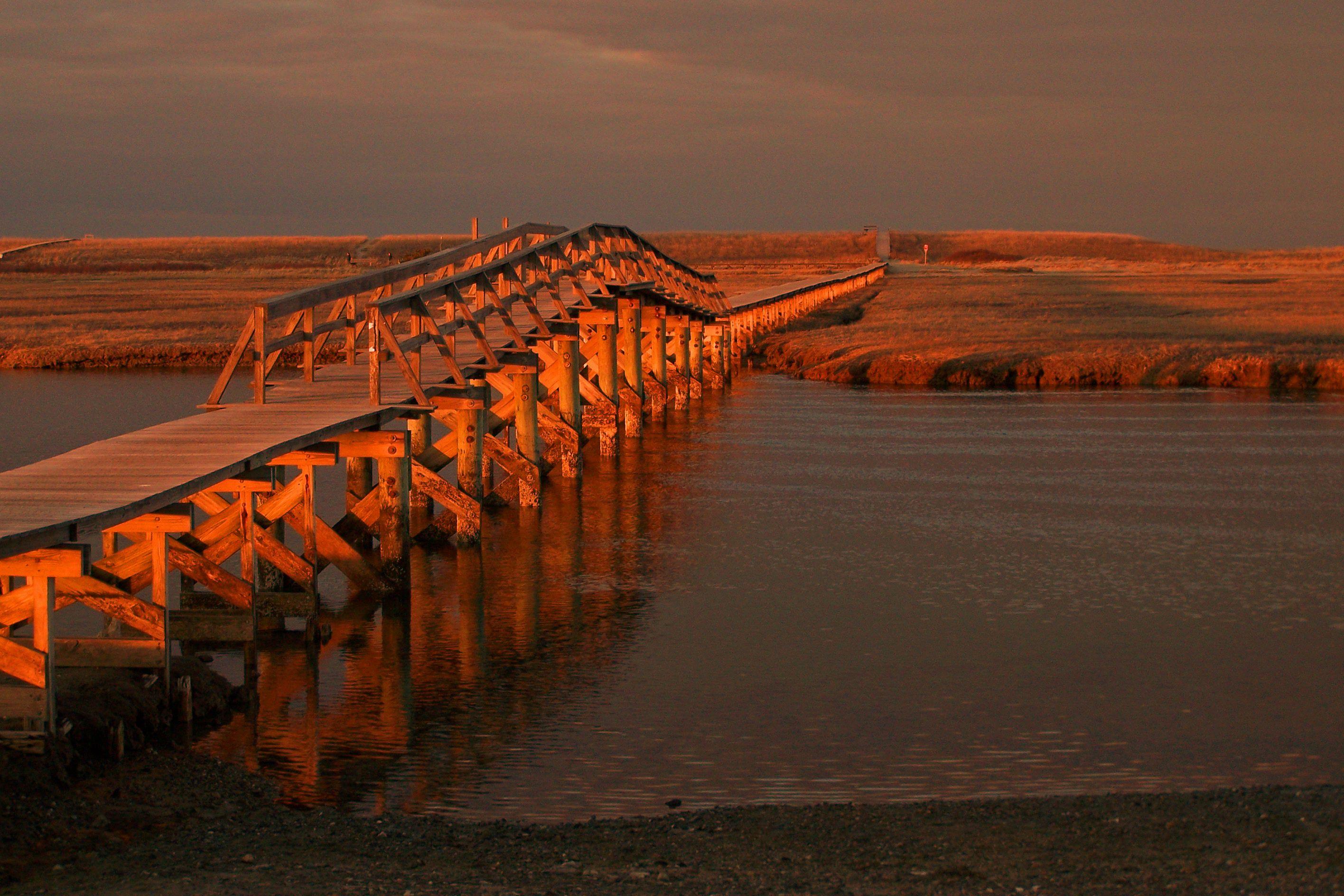 File:Murkwood Conservation Lands, East Sandwich MA.jpg - Wikimedia ...