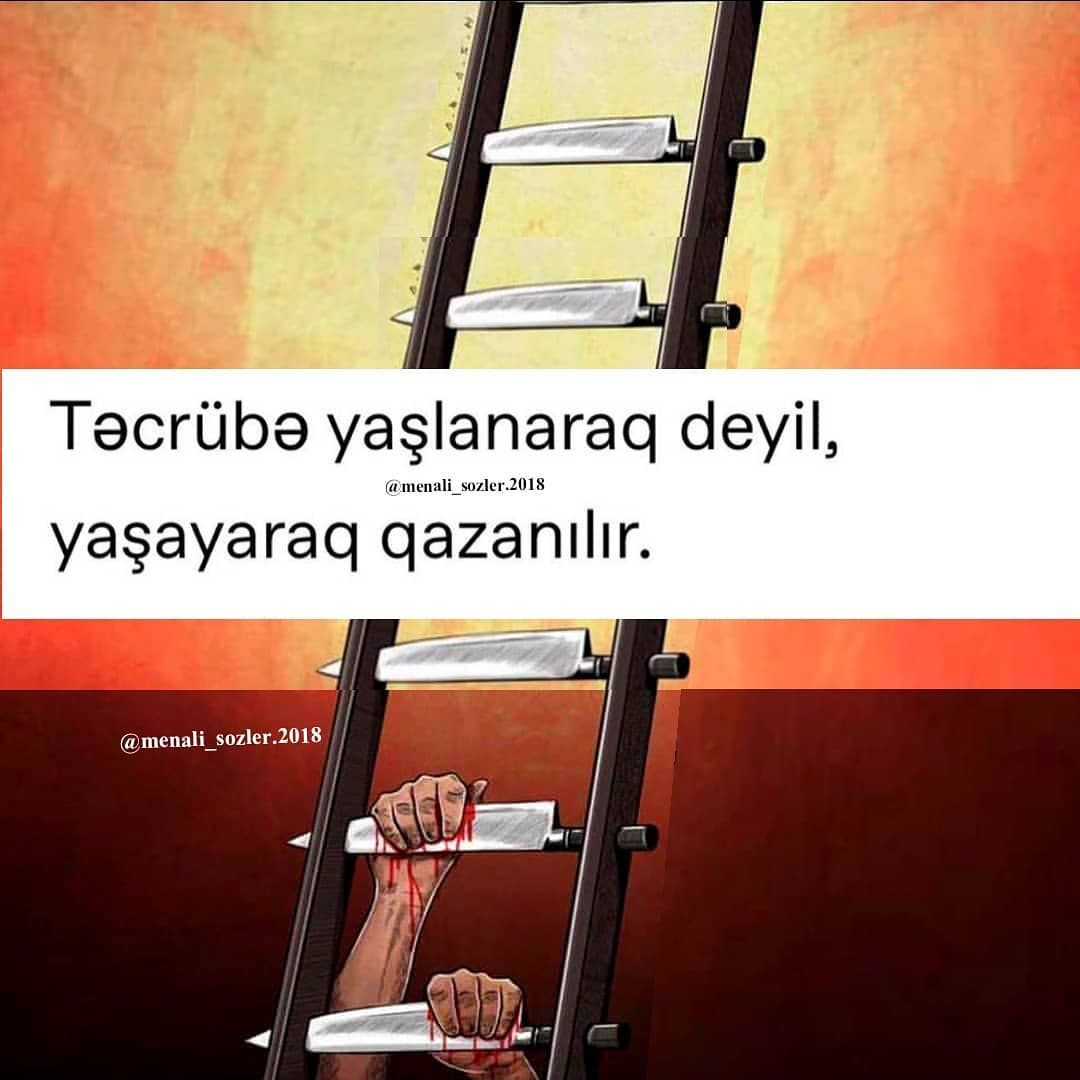 Fikirlerinizi Yorumlarda Yazin Menali Sozler 2018 Azerbaycan Azerbaijan Aztgram Baku Baki Gence Hikaye Azeri Azerbaycan Alya Ladder