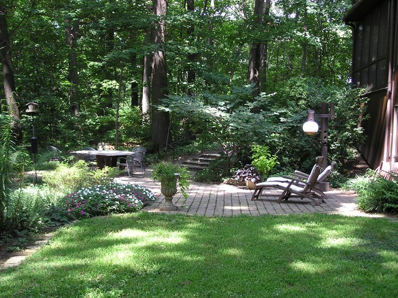 Woodland landscape design ideas woodland garden design for Backyard patio design ideas