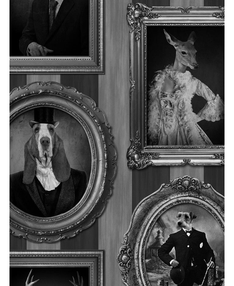 Dogs In Frames Wallpaper Muriva J59309 Quirky Wallpaper Framed Wallpaper Dog Wallpaper
