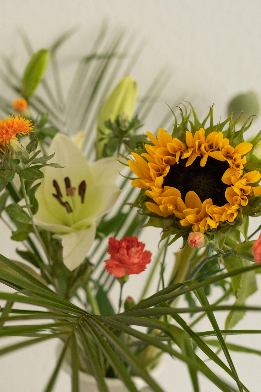 Pin Auf Bloomy Days Blumen Abo