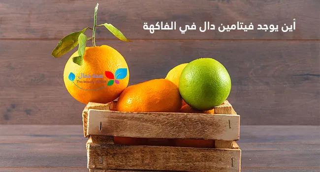 أين يوجد فيتامين دال في الفاكهة ماذا ينجم عن نقص فيتامين د وكيف يمكن تعويضه Sehajmal Fruit Apple Mango