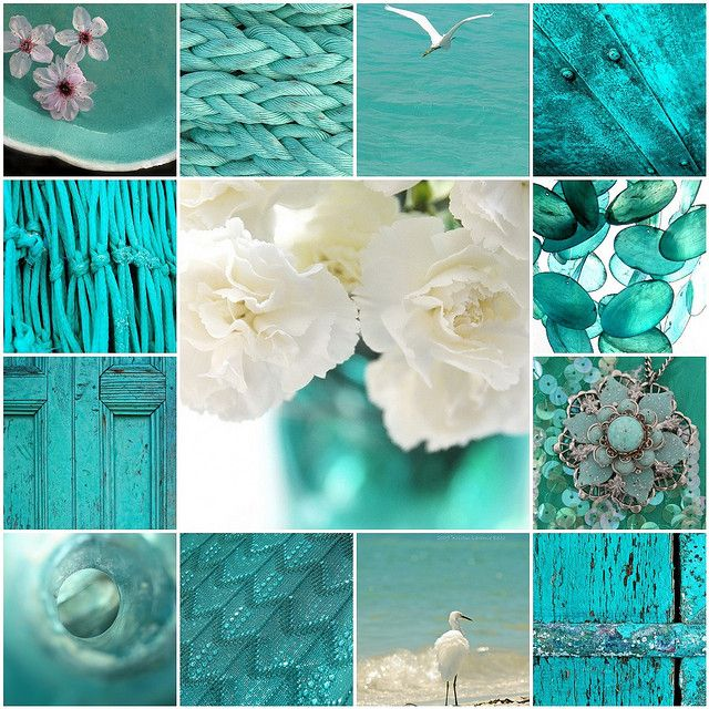 Greenish teal and white | Flickr - Photo Sharing!