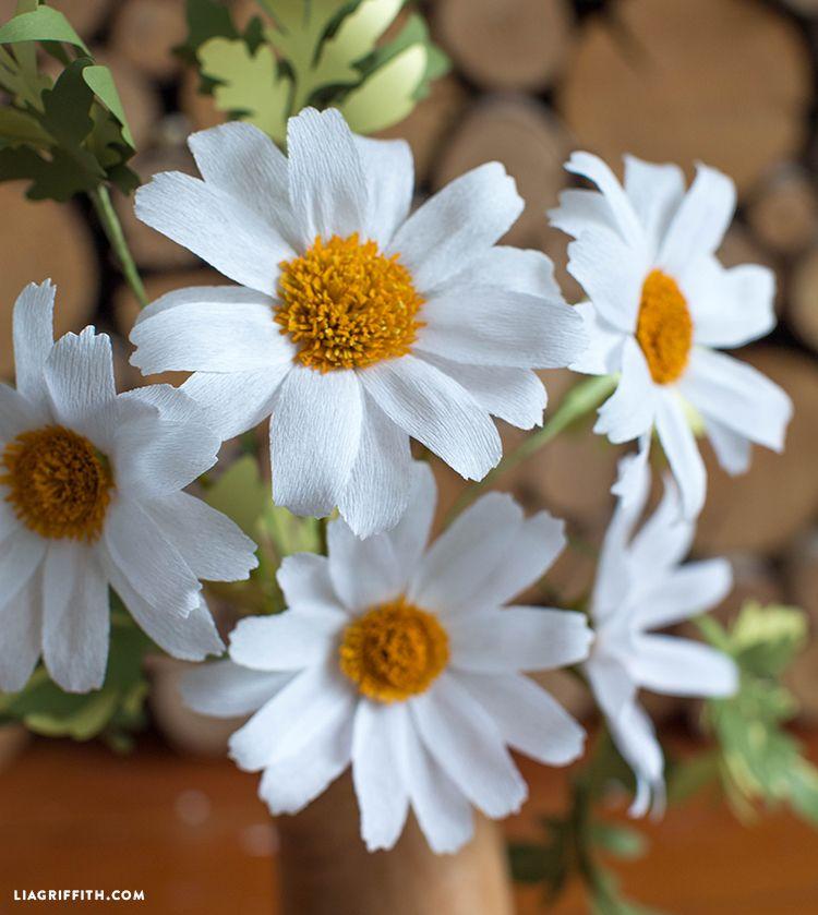 Diy Easy Crepe Paper Daisy Flower Video Tutorial Paper Flowers