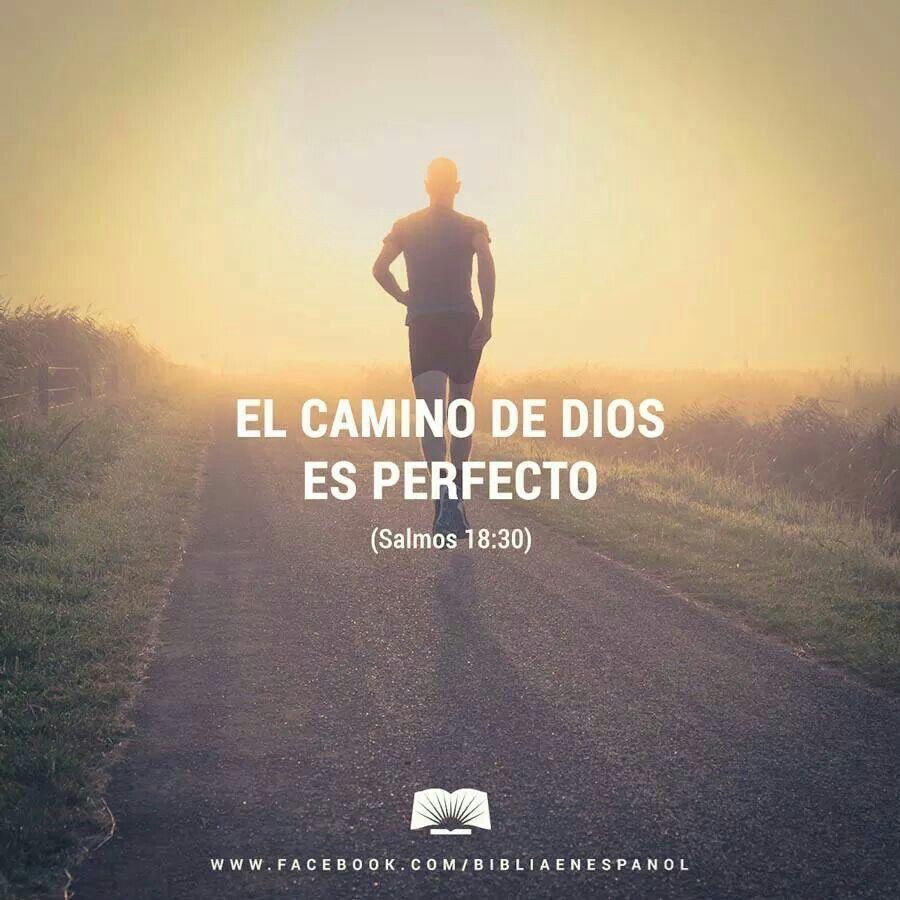 Salmos 18:30