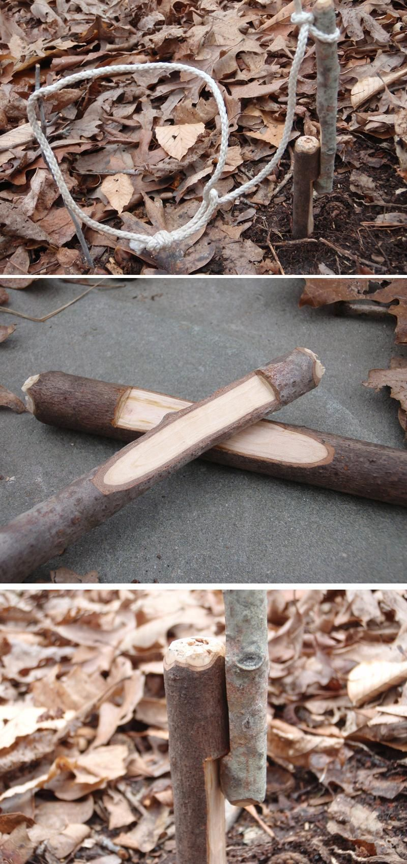 How to Build a Trap: 15 Best Survival Traps | Survival skills every ...