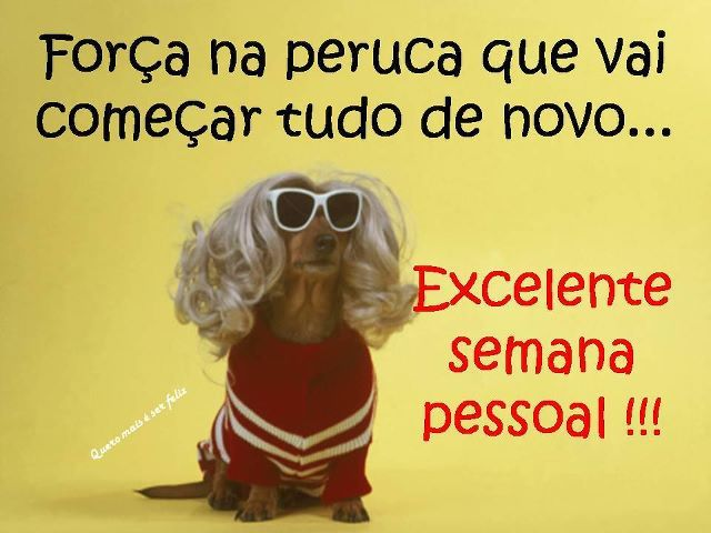 Boa Semana Frases Frases Humor E Quotes