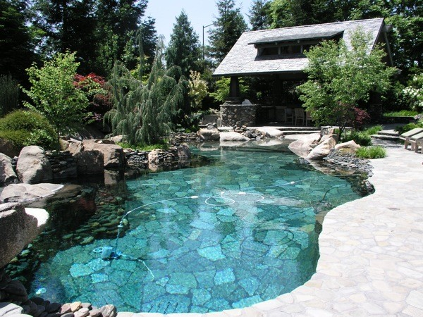 Salt Water Pool Designs Decor Neilmclean Info 600×450 Attachment - creatiffco.com #poolimgartenideen