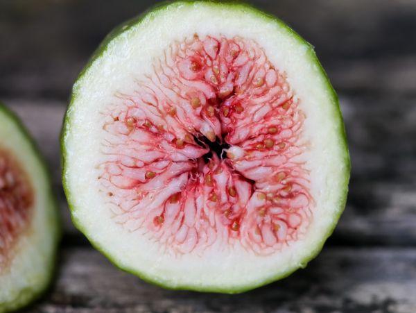 Wann Sind äpfel Reif : wann sind feigen reif tipps zur richtigen erntezeit bei feigen feigenbaum feigen und garten ~ A.2002-acura-tl-radio.info Haus und Dekorationen