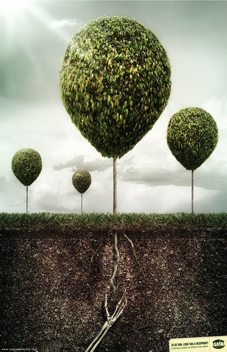 Sin Árboles NO hay oxigeno